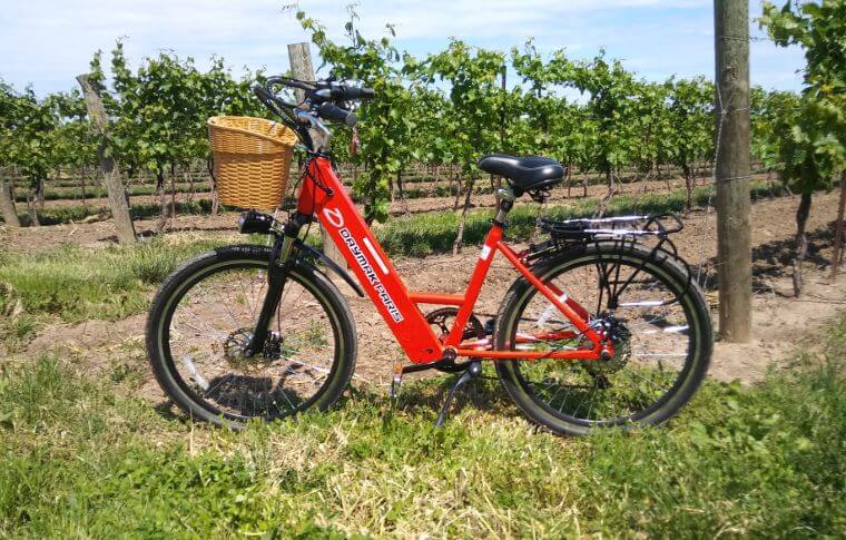 An electric bike with a basket in front of the vines